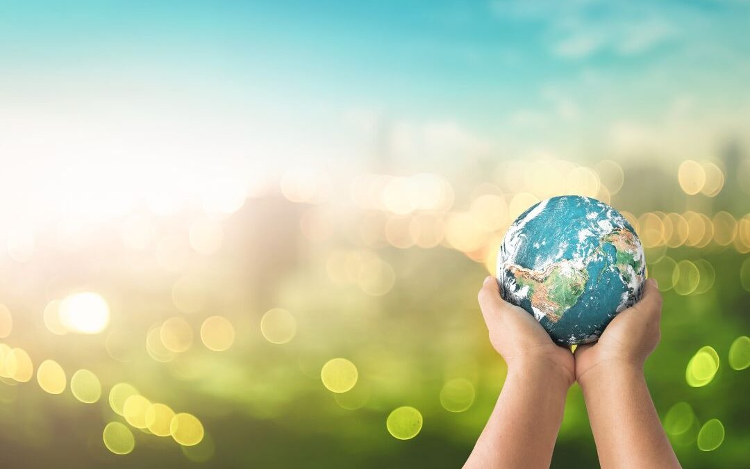 Five easy changes to make your business more sustainable